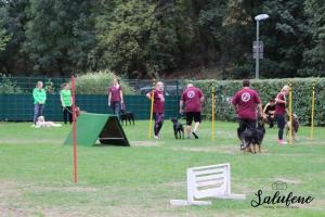 THS Mannschaftsturnier - Peter Gornik Cup 15./16.09.2018